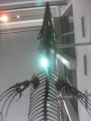 IMG_4180 (FigmentJedi) Tags: minnesota dinosaurs sciencemuseumofminnesota