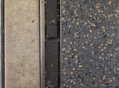 plaveisel (Pieter Musterd) Tags: holland canon pavement nederland thenetherlands denhaag canon5d nl paysbas thehague niederlande zuidholland plaveisel musterd pietermusterd sgravenhage canon5dmarkii haagspraak pmusterdziggonl