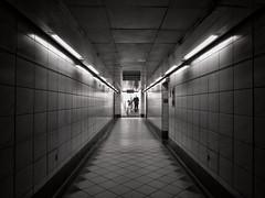 Convenience (Douguerreotype) Tags: city uk england people urban blackandwhite bw london monochrome sign stairs underground subway lights mono metro britain tube steps bank tunnel tiles gb british