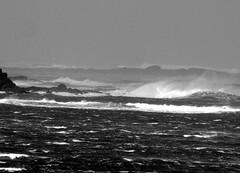 Storm (patrick_milan) Tags: sea blackandwhite bw mer white storm black beach monochrome noir noiretblanc wave nb vague plage blanc tempte