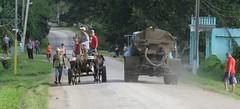 Varied Traffic (Hear and Their) Tags: bike traffic cuba biking oxen buey guardalavaca banes