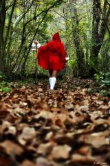 Caperucita Bea (A. del Campo) Tags: wood autumn trees red portrait woman green leaves hojas mujer rojo nikon rboles chica child cuento retrato asturias bosque otoo nikkor tale caperucitaroja nikond3000
