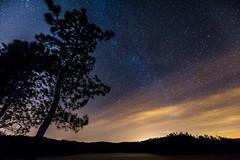 Above us all (sa.pedro.paiva) Tags: above sky lake tree portugal water night canon way stars lago eos long exposure estrelas via barragem noite milky ef exposio 6d longa 1635mm cabril lctea f4l