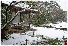 Snowy day in Murin-an garden, Kyoto (Damien Douxchamps) Tags: snow japan garden japanesegarden kyoto   kansai  japon  kinki  murinan    southernsakyo