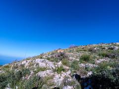 YDXJ1032 (Mancusomancuso) Tags: mountain sicily monte sicilia bagheria escursione catalfano