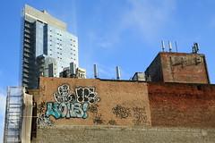 lions dinker treez (Luna Park) Tags: nyc ny newyork brooklyn graffiti beef lions floater treez dink dinker