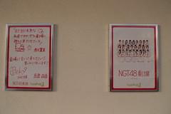 ngt48の壁紙プレビュー