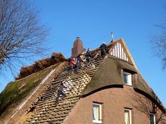 Lsung-answer (Anke knipst) Tags: new blue roof sky himmel blau dach neu schleswigholstein arbeiter decken balken reetdachhaus