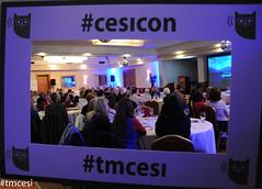 #CESI-11.jpg