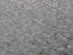 MVI_9044 (neppanen) Tags: ocean winter sea snow ice suomi finland island helsinki lumi talvi meri suomenlinna sveaborg j saari suokki discounterintelligence sampen helsinginkilometritehdas