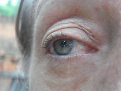 66/366 Green (JessicaBelotto) Tags: show verde green photo eyes pessoa foto ar retrato alma olhos days honey soul olho ao fotografia projeto livre mão rosto detalhe fotográfico fotografando 366 mostram 366daysofhoney 366diasnoano