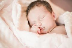 Sesso Estdio (FabricadaFotografia) Tags: estudio filipe andreia gravida sessao recemnascido 201506
