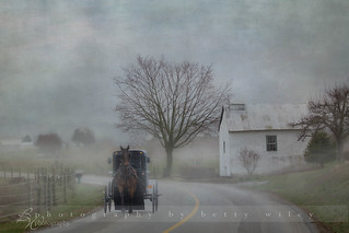 Amish country morning