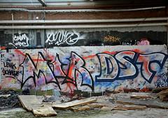 graffiti breukelen (wojofoto) Tags: holland graffiti nederland netherland mir breukelen dst wolfgangjosten wojofoto