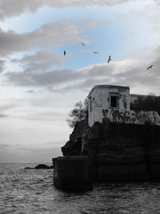 Freedom - B&W (Diego Zarulli) Tags: sea bw italy freedom mare napoli naples biancoenero gaiola