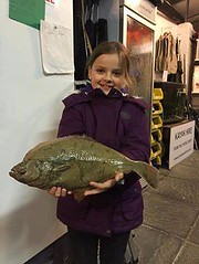 "Willow Herbert's Flounder • <a style=""font-size:0.8em;"" href=""http://www.flickr.com/photos/113772263@N05/25740930603/"" target=""_blank"">View on Flickr</a>"