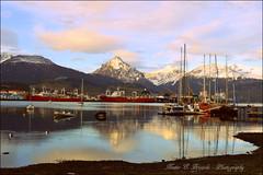 Bahia y Puerto de Ushuaia - Tierra del Fuego - Argentina (colorado50) Tags: patagonia reflection argentina del ushuaia puerto bay harbor tramonto barcos bahia fuego arg reflejos tierra austral findelmundo mteolivia mte5hermanos