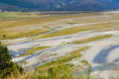 printing field (SusanCK) Tags: ocean newzealand landscape susancksphoto