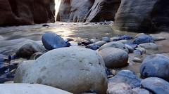 Zion Nation Park - The Virgin Narrows (lenidenengelse) Tags: utah zionnationalpark thenarrows