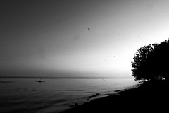IMG_7204 (ermac.fm) Tags: bw bali dusk sigma1020mmf456 canoneos50d
