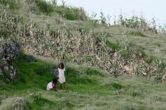 IMG_6598 (wi dodow) Tags: cerita tuban bukit anakanak kancing pesonaindonesia
