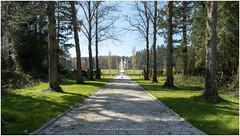 Spring has arrived! (CvK Photography) Tags: city color netherlands canon spring europe estate enschede twente overijssel vanheek
