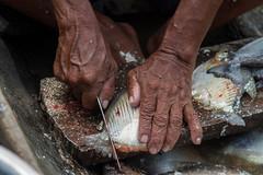 Amazon Jungle, Peru (Bartosz Lisek) Tags: travel people food fish peru southamerica nature fishing amazon hand selva canoe jungle wrinkles amerykapoudniowa pacayasamiria