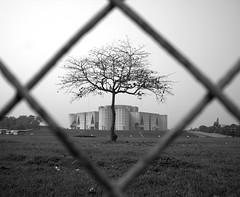 national parliament house, bangladesh (dr.ms_haque) Tags: bw house tree nature national frame dhaka kkk bangladesh