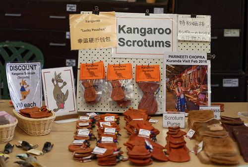 Kangaroo Scrotums