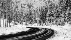 Snowing On Hyde Park Road (Mabry Campbell) Tags: road trees winter blackandwhite usa white snow newmexico santafe nature monochrome landscape photography countryside photo december photographer image unitedstatesofamerica hasselblad photograph snowing 100 curve f71 fineartphotography 80mm 2015 commercialphotography santafecounty hc80 sec mabrycampbell h5d50c december242015 20151224campbellb0000226