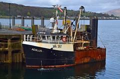 Aeolus (Zak355) Tags: scotland riverclyde boat scottish vessel fishingboat trawler bute rothesay isleofbute aeolus wa267