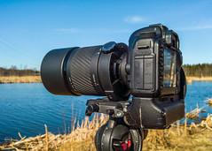 Canon  EOS 5D mk II + Sigma 600mm f/8 mirror (Antti Tassberg) Tags: camera macro canon lens eos prime raw sigma microsoft 5d stillife product xl kamera manfrotto 950 dng lumia 600mm mirrorreflexlens pureview iphoneography lumia950 lumia950xl