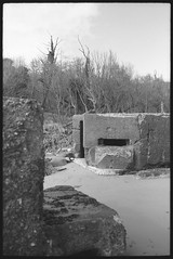 Pillbox (fawcetownsley) Tags: trees blackandwhite bw film beach diy kodak developer m42 praktica fixer travenar technicalpan technidol 18min 32asa screwlens