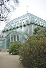 Jardin des Serres, Auteuil (carolyngifford) Tags: paris glasshouses auteuil jardindesserres