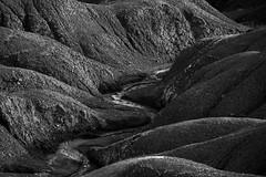 entre las luces y la sombra (clover2500) Tags: blanco y negro navarra bardenasreales
