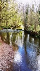 A french landscape... #nature #landscape #france #river #pastoral #bucolic (Eaglle Northy) Tags: france nature river landscape pastoral bucolic