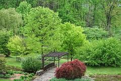 Spring Garden (JPShen) Tags: red tree green garden bench spring maple