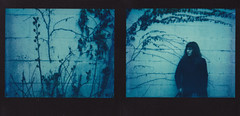 the blue hour (Lisa Toboz) Tags: selfportrait polaroid diptych bluehour spectra instantfilm impossibleproject polaroidweek2016