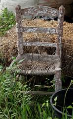 LA SILLA (Joan Biarns) Tags: silla texturas santgregori cadira canon7d