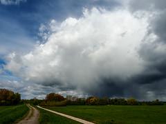 Here comes the rain again (Oliver Str) Tags: weather de landscape deutschland hessen wetter raincloud landschaften riedstadt regenwolke