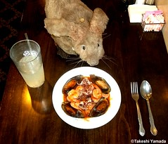 Dr. Takeshi Yamada and Seara (Coney Island Sea Rabbit) at the Seaport Buffet Chinese restaurant in Sheepshead Bay in Brooklyn, NY on May 13, 2015.  20150513 133=2040C= (searabbits23) Tags: ny newyork sexy celebrity rabbit art hat fashion animal brooklyn sushi asian coneyisland japanese star restaurant tv google king artist dragon god manhattan famous gothic goth uma ufo pop taxidermy vogue cnn tuxedo bikini tophat unitednations playboy entertainer oddities genius mermaid amc mardigras salvadordali performer unicorn billclinton seamonster billgates aol vangogh curiosities sideshow jeffkoons globalwarming mart magician takashimurakami pablopicasso steampunk damienhirst cryptozoology freakshow seara immortalized takeshiyamada roguetaxidermy searabbit barrackobama ladygaga climategate  manwithrabbit