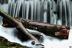 drift wood (yves_matiegka) Tags: wood longexposure wild white water forest waterfall moss log outdoor driftwood smokey