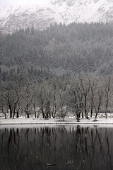 Fozen Winter, Loch Lubnaig, Scotland (Ludovic Farine) Tags: uk travel trees winter white lake snow cold reflection tree nature water beautiful forest landscape scotland frozen still britain scottish freeze loch lubnaig