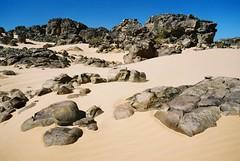 Mauritania (denismartin) Tags: sahara trek sand rocks desert s camel geology wste mauritania mauritanie dromadaire   canoneos500 chinguetti  ergouarane  denismartin    mrtny argenticpic guelberraoui ezzerga
