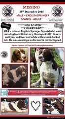 Fri, Dec 25th, 2015 Lost Male Dog - A465, Bromyard Hr7, Not applicable (Lost and Found Pets Ireland) Tags: dog lost december applicable 2015 a465 lostdoga465notapplicable