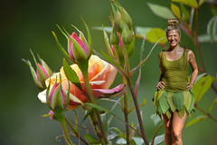 Tinkering In The Garden (swong95765) Tags: roses beauty female costume bokeh tinkerbell camouflage blonde lovely blending