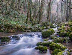 courant d'Autoire (BZ1028) Tags: longexposure france nature water forest nikon stream lot lanscape fort waterstream midipyrenees poselongue gorillapod d3200 autoire nikonpassion departementdulot 18105vr tourismelot espritlot
