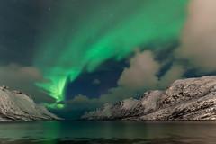 Ersfjordbotn - Norway (Mr F1) Tags: sea sky snow mountains norway dark stars aurora colourful borealis northerlights johnfanning