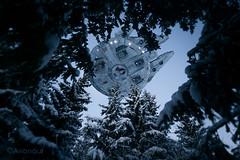 The Treetop Falcon Vol.2 (Avanaut) Tags: blue winter snow cold pine toy miniature starwars woods flight spaceship spruce originality scalemodel millenniumfalcon toyphotography finemolds
