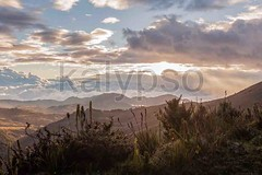 Sunset Alpine Scenery (kalypsoworldphotography) Tags: park travel blue sunset summer vacation sky cloud sun mountain holiday cold green tourism southamerica nature field contrast sunrise trekking landscape climb nationalpark high ecuador view natural outdoor altitude hill meadow fluffy peak canyon aerial evergreen alpine national valley andes vegetation destination wilderness volcanic range attraction andean cordiliera